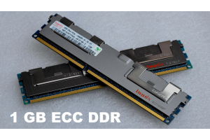 Additional RAM (1 GB)